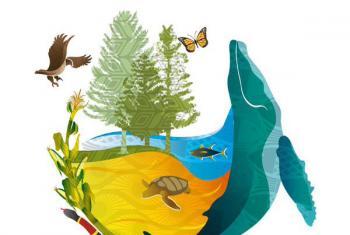 La COP13 hizo un llamado a que los países redoblen los esfuerzos de protección de la diversidad biológica del planeta.