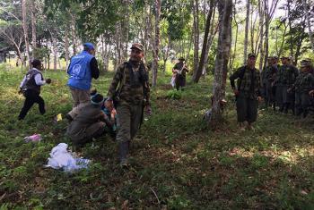 Los últimos miembros de las FARC-EP llegan a las zonas veredales. Foto: Misión de la ONU en Colombia