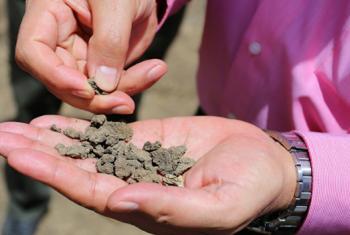 La degradación del suelo se produce por prácticas agrícolas intensivas, la contaminación y el cambio climático. Foto: OIEA/N.Jawerth.