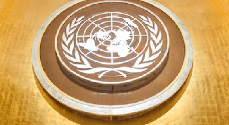 Emblème des Nations Unies à l'Assemblée générale. (