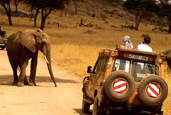 Le tourisme en Afrique connaît un développement sans precedent.