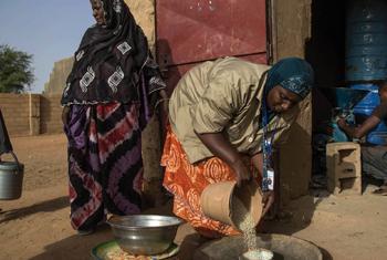 Femmes près d'un moulin à Gao (Mali). Photo/MINUSMA