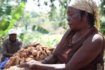 Une agricultrice en Haïti. Photo/PNUD