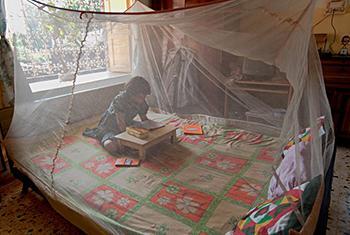 Une fillette lit sur un lit protégé par une moustiquaire au Bengale occidental, en Inde. Photo Joydeep Mukherjee