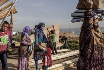 Des réfugiés syriens dans un camp de fortune au Liban transportent des matériaux, y compris des planches pour renforcer leurs abris à l'approche de l'hiver. (Crédit photo : HCR/I. Prickett)
