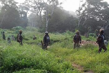 Beni, Nord-Kivu, RD Congo. Les troupes de la MONUSCO en appui aux FARDC en pleine opération pour la neutralisation des groupes armés et la protection des civils dans le territoire de Beni.(Photo : MONUSCO)