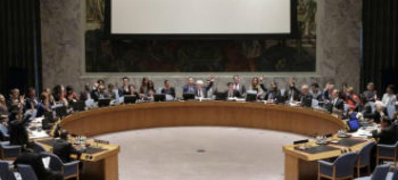 Conselho de Segurança renova mandato da Onuci. Foto: ONU/Evan Schneider