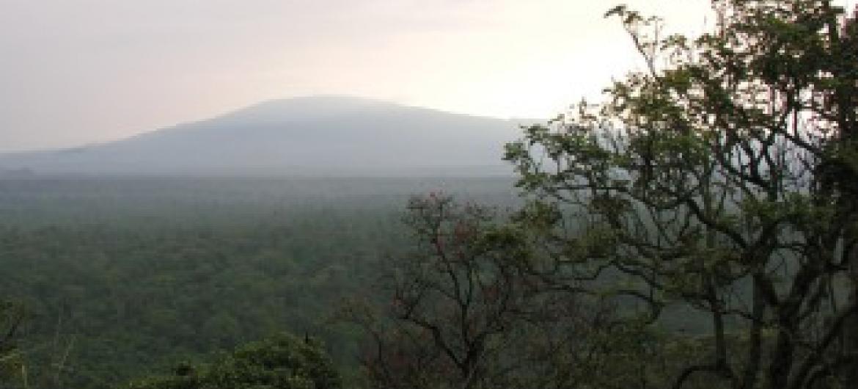Parque foi gravemente afetado pelos conflitos. Foto: Unesco/Yvette Kaboza