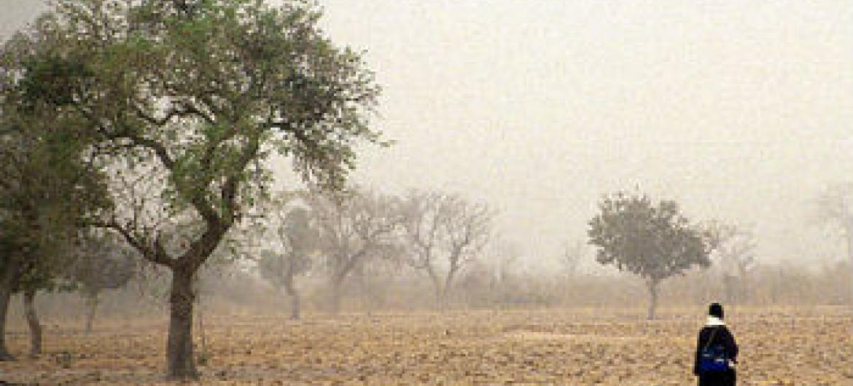 Pesquisas sobre clima africano. Foto: Banco Mundial/Curt Carnemark