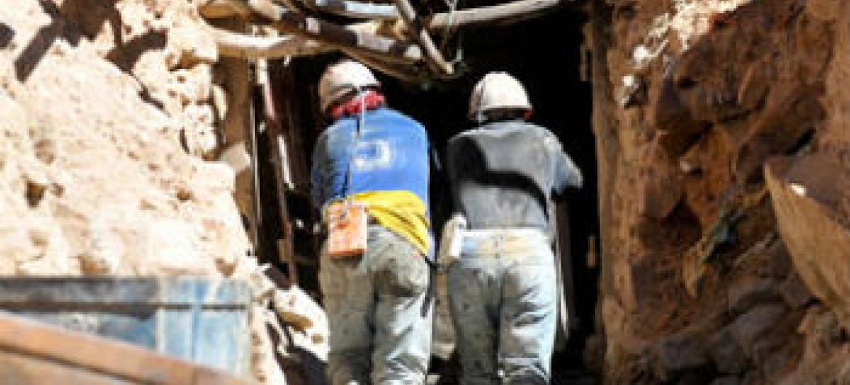 Segurança no trabalho. Foto: OIT
