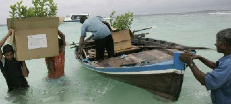Desenvolvimento económico nas pequenas ilhas. Foto: FAO