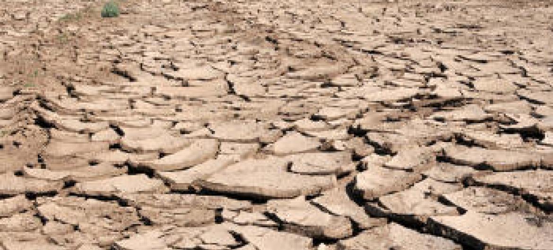 Áreas desérticas preocupam a Guiné-Bissau. Foto: Banco Mundial