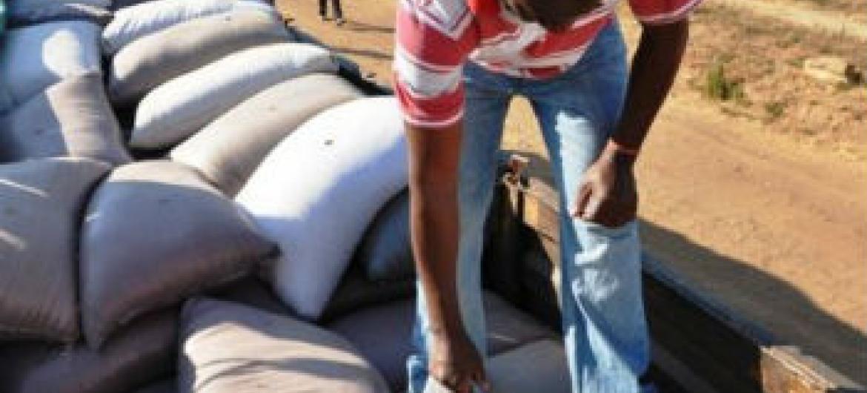 """De acordo com gestora da Unido, introdução de produtos feitos com a soja """"adiciona valor nutricional e garante recursos alimentares"""".Foto: PMA/Jane Chirwa (arquivo)"""