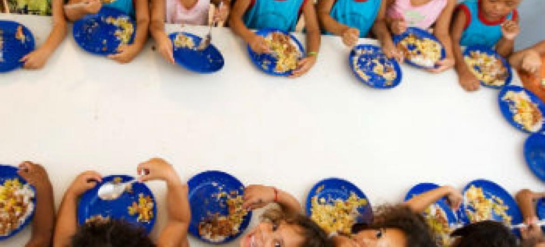 Chefe da agência afirmou que o sistema alimentar do futuro tem que ser mais eficiente. Foto: FAO