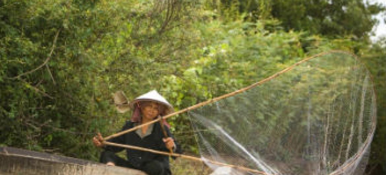 Mulher à pesca num rio no Camboja. Foto: FAO