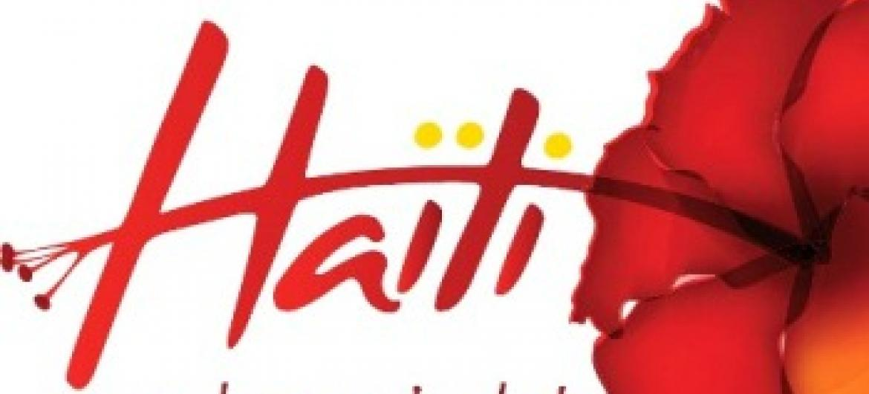 Flor de hibisco decora paredes.Foto: Governo do Haiti