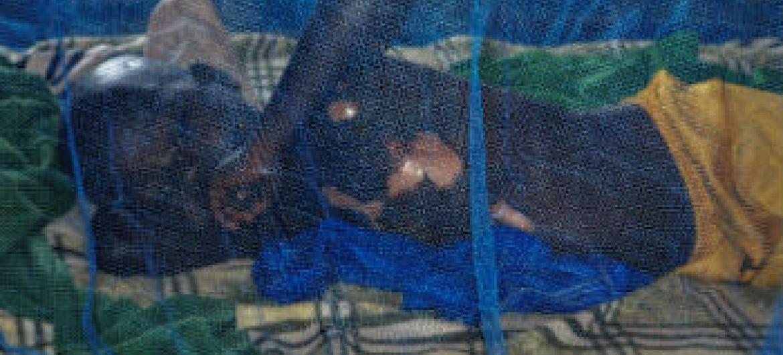 Redução de casos de malária na Guiné-Bissau. Foto: OMS/T. Seburyamo