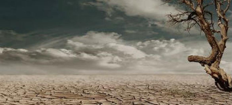 Combate à mudança climática. Foto: Pnuma