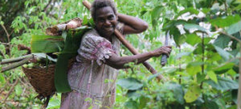 Panorama Regional da Insegurança Alimentar em África. Foto: FAO