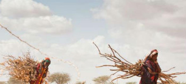 Mudança climática contribui para seca em África. Foto: Acnur UNHCR/B. Bannon