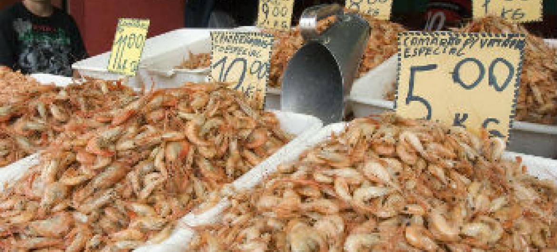 Venda de camarão no norte do Brasil. Foto: ONU/Eskinder Debebe