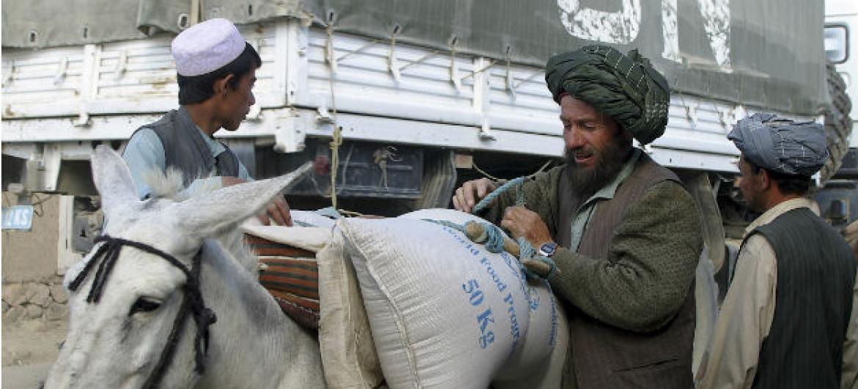A agência tem capacidade de enviar comida, por um mês, para aproximadamente 12 mil famílias. Imagem: