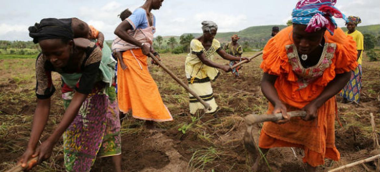 Desenvolvimento sustentável será parte das discussões na Semana de África. Foto: Banco Mundial/Dominic Chavez