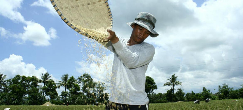 """Ban Ki-moon diz que acabar com a fome é """"responsabilidade de todos"""". Foto: Danilo Pinzon / World Bank"""