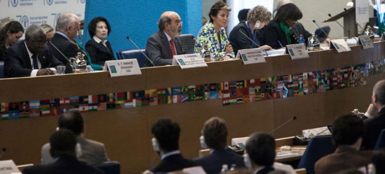 Comitê Mundial sobre Segurança Alimentar reunido em Roma. Foto: FAO/Giulio Napolitano