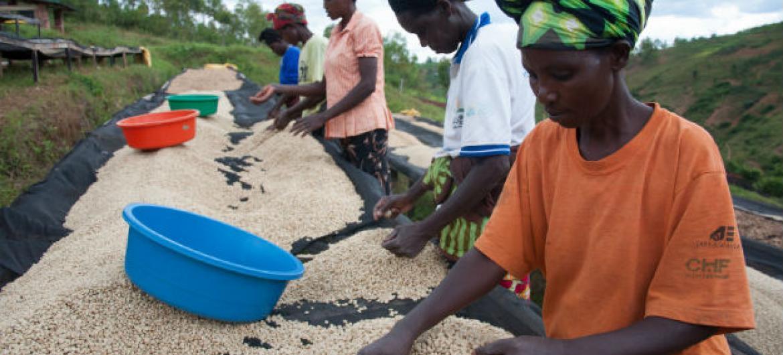 O encontro é organizado pelo Banco de Desenvolvimento Africano, Afdb, na sigla em inglês, e o governo do Senegal. Foto: Prohjeto AfDB/ Banco Mundial