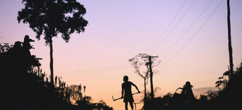 Fazendeiro em Vila De Canoas, perto de Manaus, no Brasil. Foto: Julio Pantoja / Banco Mundial