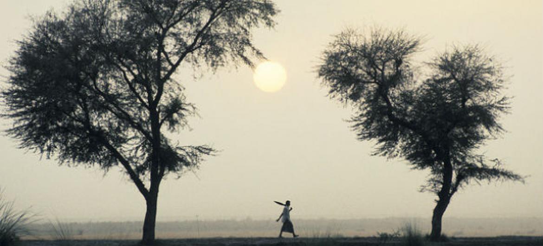 Investimentos para reduzir as alterações climáticas no continente africano. Foto: Banco Mundial/Curt Carnemark