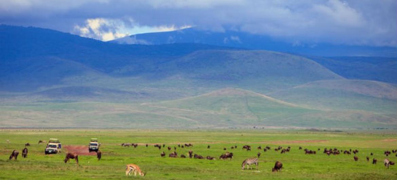 Turismo no continente africano. Foto: OMT