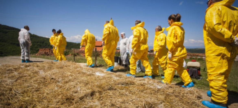 Uso excessivo e incorreto de antibióticos provocam maior resistência dos agentes que causam infeções e doenças.Foto: FAO/Yanne Golev