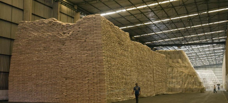Açúcar produzido no Brasil. Foto: ONU/Eskinder Debebe