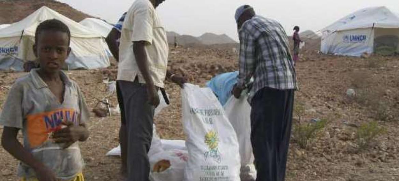Acnur apoia pequenos esquemas de subsistência para somalis. Foto: Ancur.