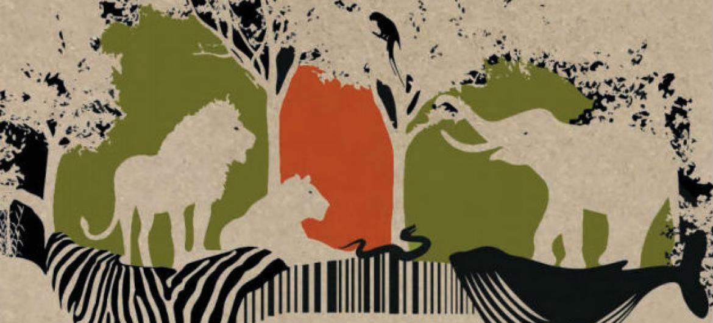 1º Relatório Mundial de Crimes Contra a Vida Selvagem.Imagem: Unodc