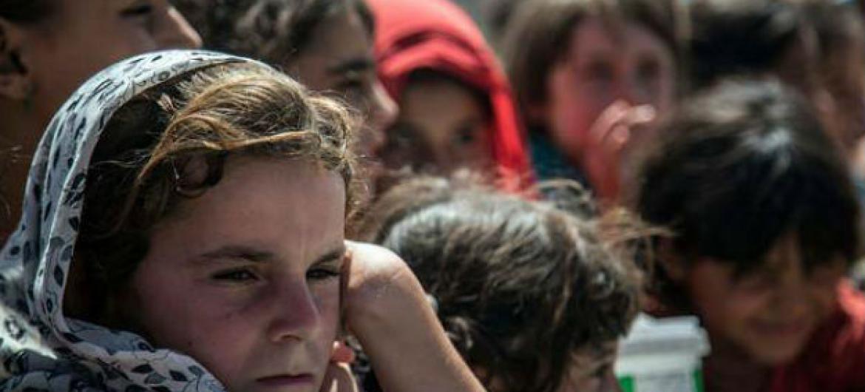 Civis em Falluja, no Iraque, precisam de assistência humanitária urgente. Foto: Ocha Iraq