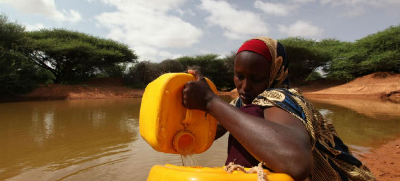 Foto: Pnud Somalia
