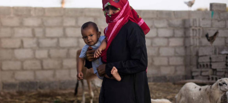 Apoio financeiro da União Europeia para combater a insegurança alimentar no Iémen. Foto: FAO