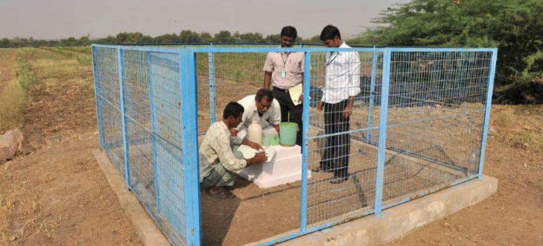 Membros de um grupo de agricultores da Índia medem os níveis da água no solo em uma cisterna. Foto: FAO/Noah Seelam