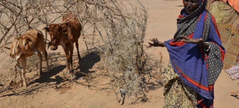 Seca na Etiópia. Foto: PMA/Melese Awoke