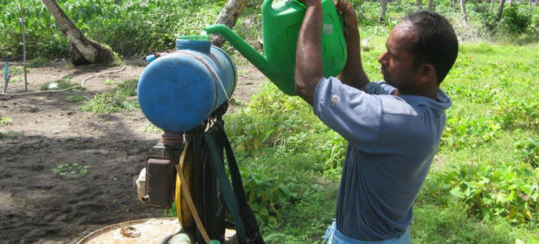 Pequenos fazendeiros nem sempre usam equipamento de proteção no manuseio de pesticidas. Foto: FAO/Harry vanderWulp