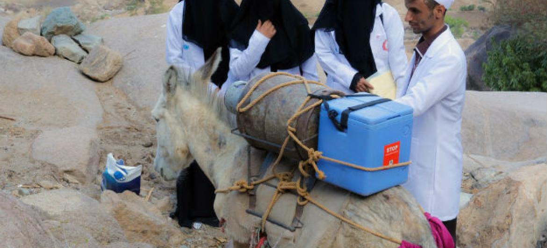 Agentes de saúde e voluntários a caminho da remota vila de Bani Mansour, em Alhaymah, no Iémen, para a entrega de vacinas contra a pólio. Foto: Unicef/Al-Zikri