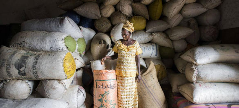 Um dos principais grupos que podem se beneficiar da formalização do comércio são as mulheres. Foto: FAO