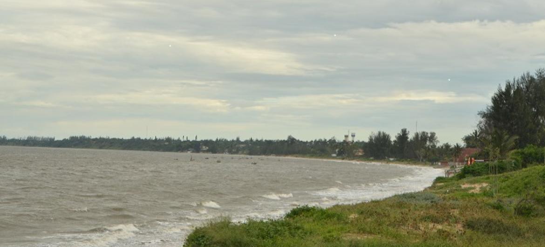 Projeto inclui restauração dos mangais que permitem controlar a erosão costeira. Foto: Ouri Pota.