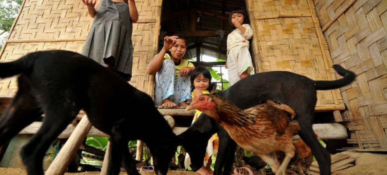 """A raiva é considerada uma """"doença da pobreza"""" e negligenciada. Foto: FAO"""