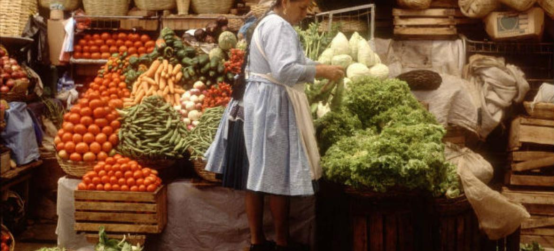 A FAO e a Opas pedem aos países que transformem seus sistemas alimentares. Foto: FAO/Rhodri Jones