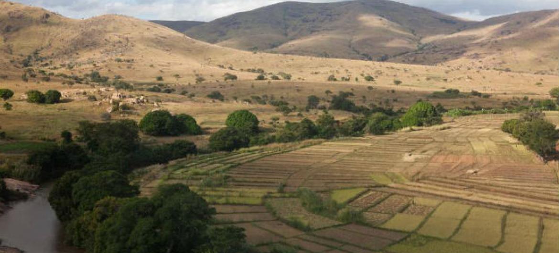 O Estado Mundial da Agricultura e Alimentação 2017. Foto: FAO