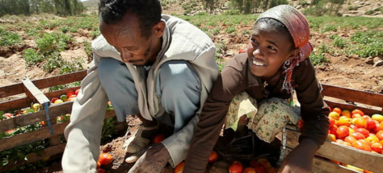Dia Mundial da Alimentação. Foto: Banco Mundial/Stephan Bachenheimer